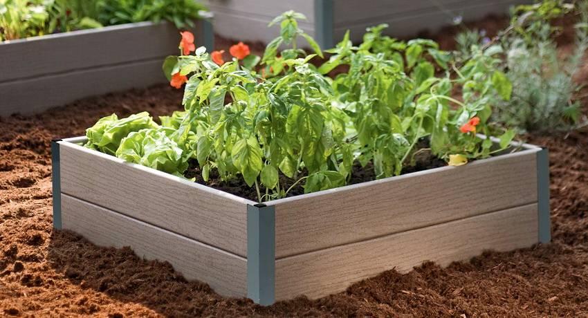 Виды садовых бордюров для клумб и грядок: их особенности, преимущества, недостатки и используемые материалы