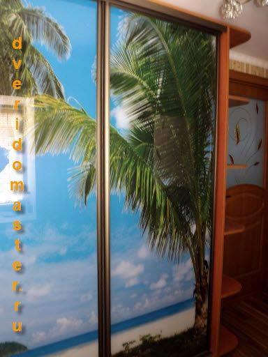 Шкаф-купе с рисунком (63 фото): 3d и пескоструйные картинки на зеркале, стекле