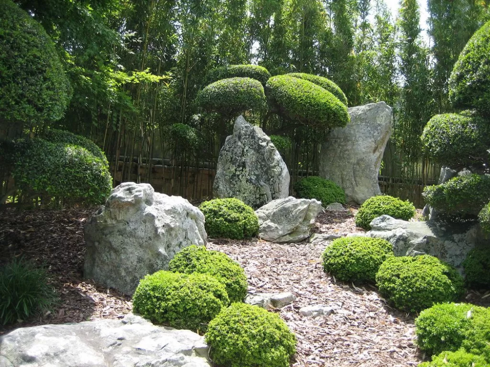 Японский сад в ландшафтном дизайне: как оформить, в каком стиле, выбор растений
