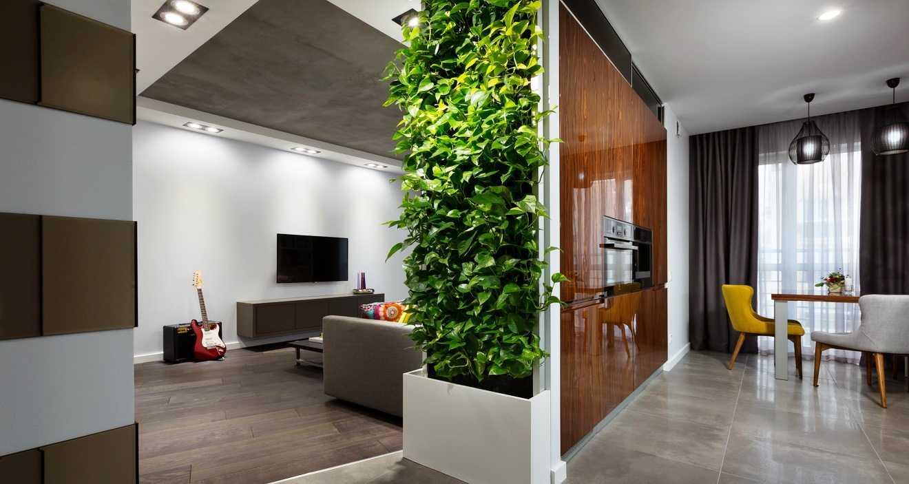 Перегородка между гостиной и кухней (52 фото): зонирование комнат раздвижной перегородкой. как отделить кухню от зала стеклянной и гипсокартонной перегородками?
