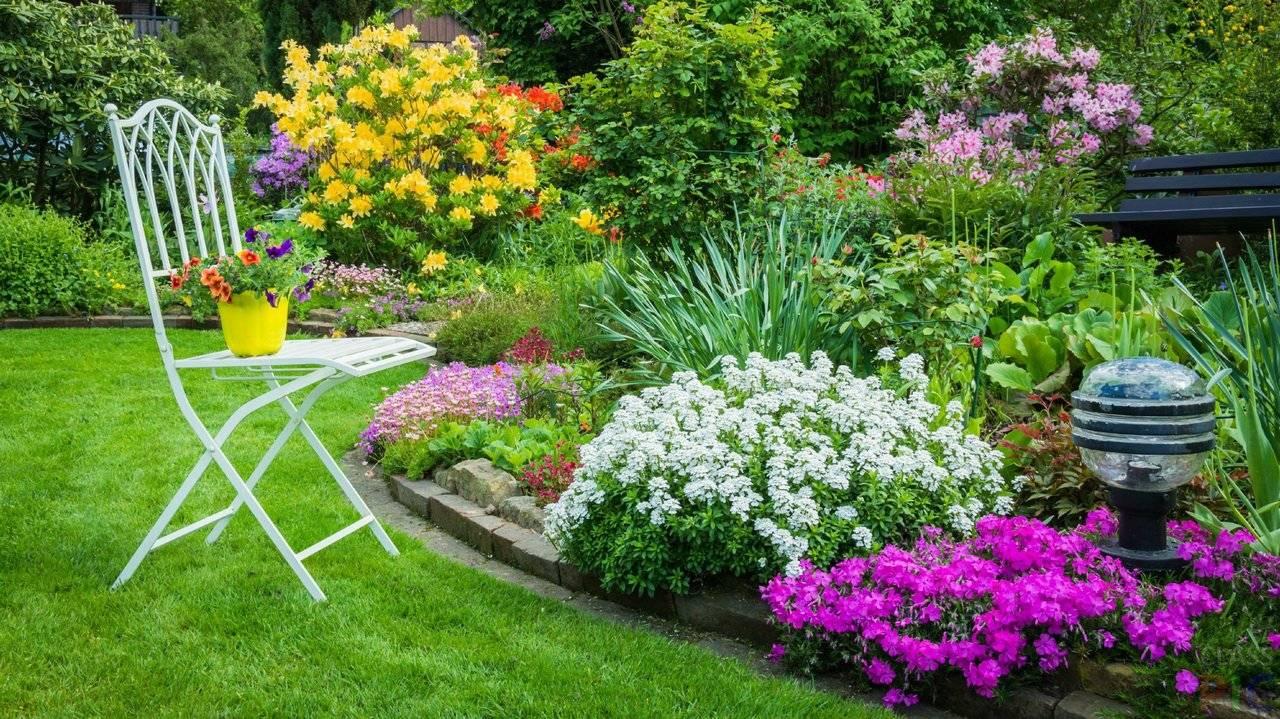 Цветник (82 фото):что это такое, клумба на даче и в саду частного дома, красивые варианты из многолетников непрерывного цветения