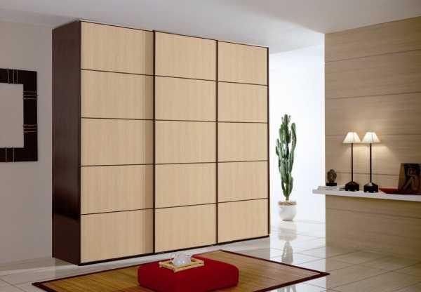 Узкий шкаф: 115 фото красивых моделей и советы по их применению в дизайне интерьера
