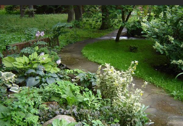 Английский сад (48 фото): отличие и особенности стиля. выбор декоративных элементов