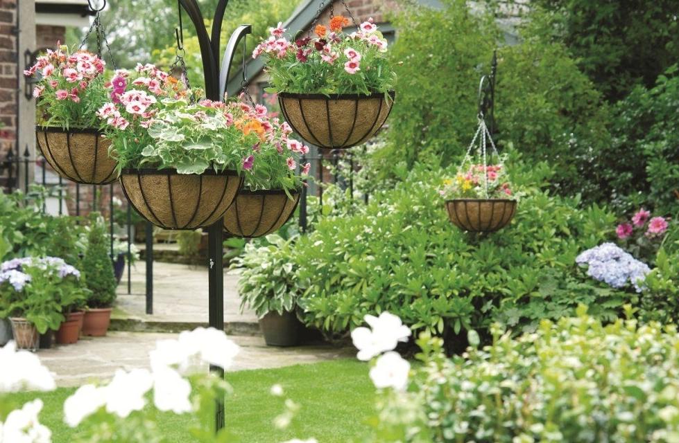 Лучшие цветы для дачи - как оформить красивый дизайн участка своими руками (120 фото)