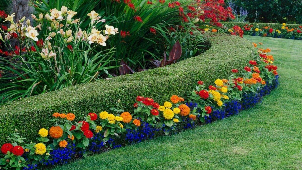Деревья, кустарники и цветы в ландшафтном дизайне