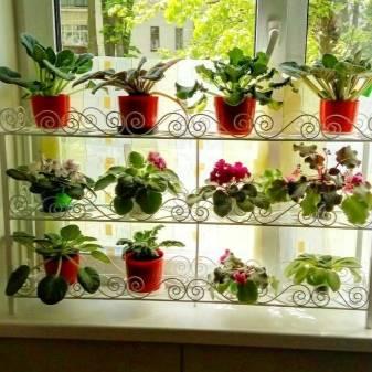 Полки для цветов своими руками с фотографиями
