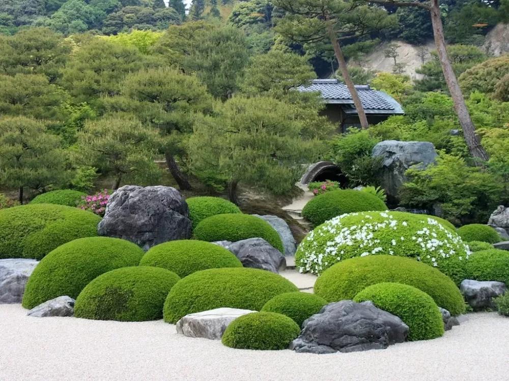 Японский сад своими руками: 23 фото-идеи | 23 фото
