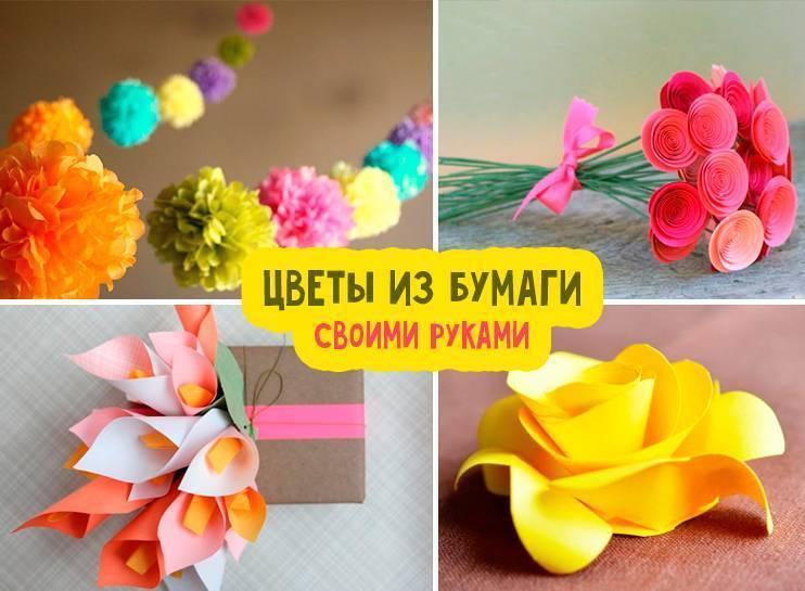 Цветы из бумаги своими руками: 150 фото и видео мастер-класс изготовления красивых цветочных поделок