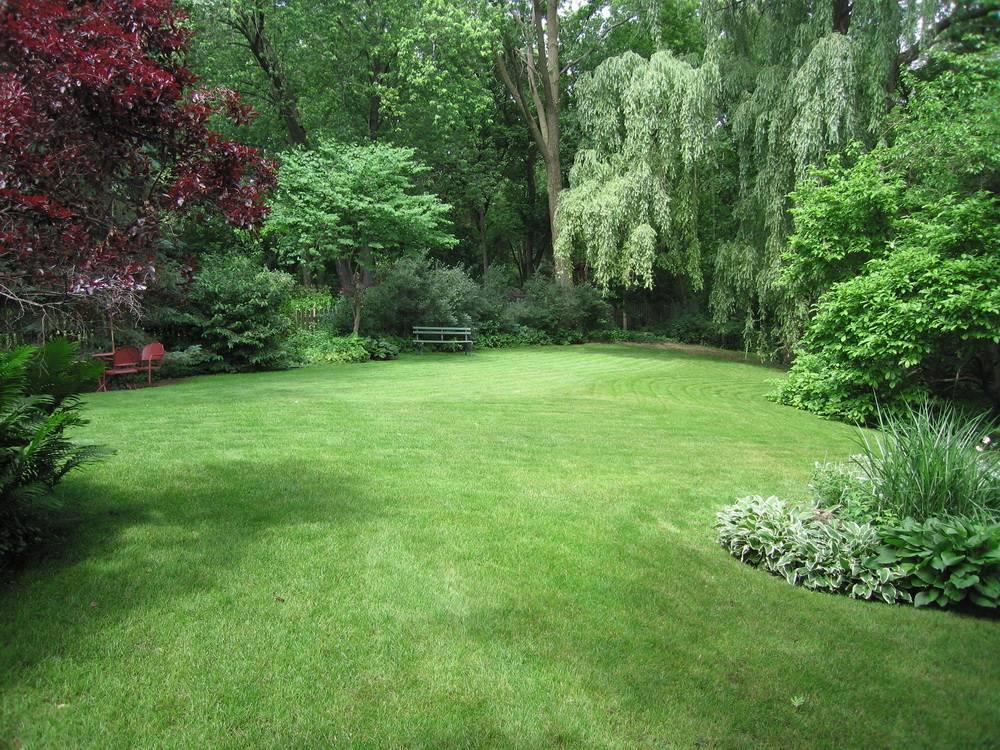 Пейзажный стиль в ландшафтном дизайне: история возникновения, особенности, рекомендации. фото.