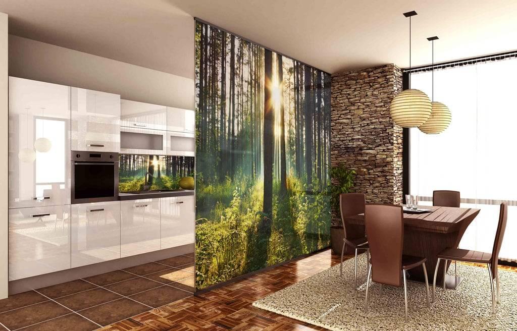 Как разделить кухню и гостиную? лучшие примеры зонирования.