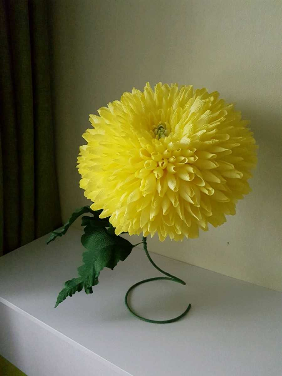 Цветы из бумаги своими руками — простые, быстрые и легкие схемы создания бумажных цветов (150 фото)