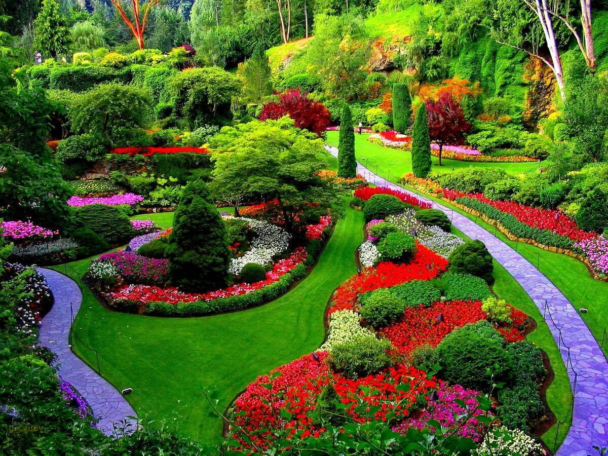 Ландшафтный дизайн в английском стиле - 75 фото