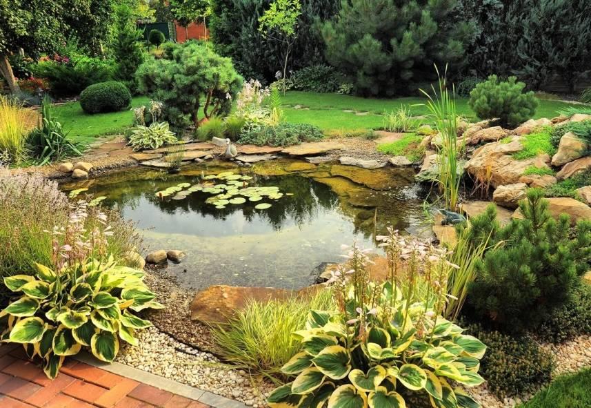 Какие садовые дорожки сделать на даче или участке (35 фото)