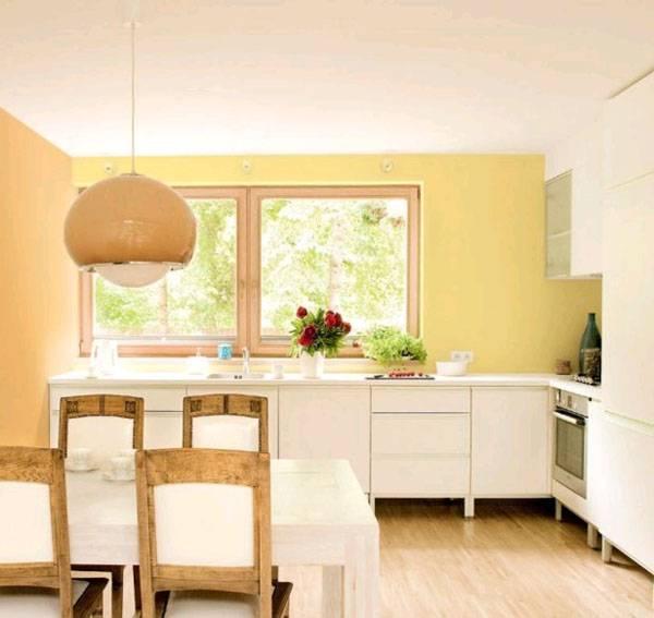 Выбор краски для кухни — оформление интерьера