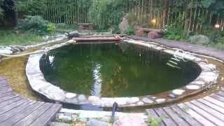 Водоемы для дачи и сада, фото, виды, размеры